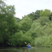 Willow Passage